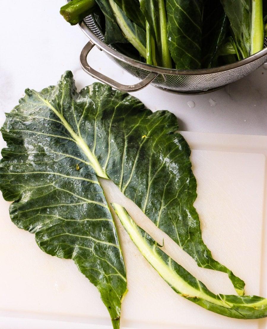 Rib cut out of collard green leaf.