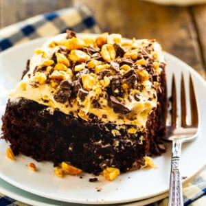 Slice of Chocolate-Peanut Butter Fun Cake on plate.