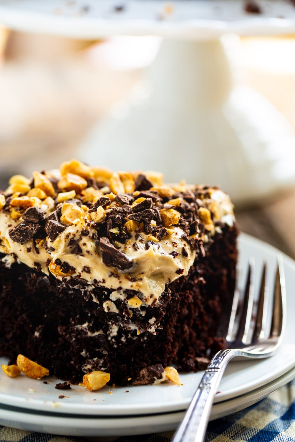 Slice of cake topped with peanuts on a plate.