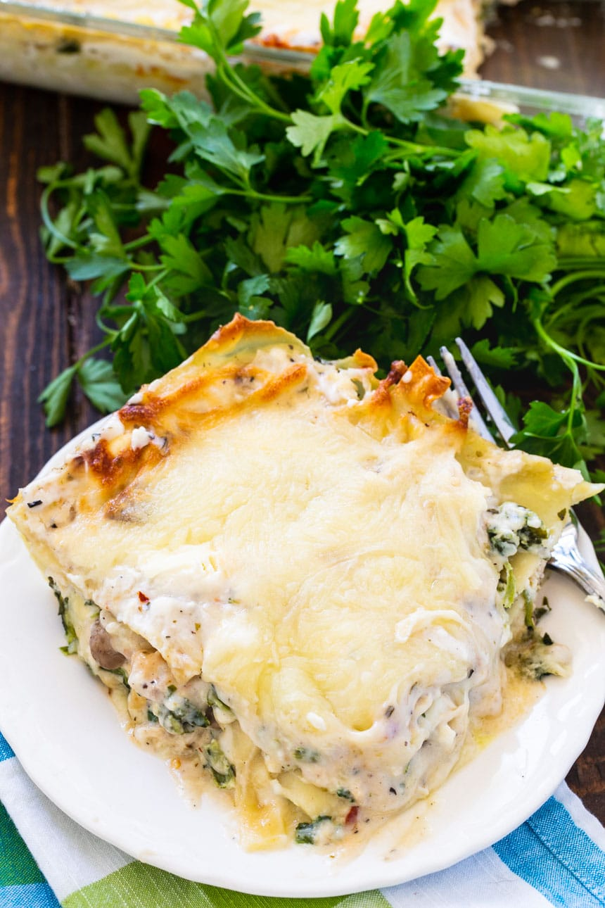 Creamy Chicken Lasagna