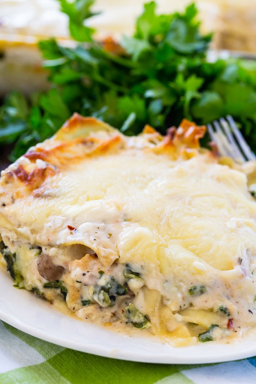 Chicken Lasagna with a creamy white sauce