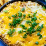 Cheesy BBQ Pork Dip