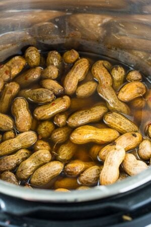 Instant Pot Spicy Boiled Peanuts