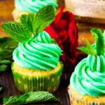 Mint Julep Cupcakes topped with mint sprigs.