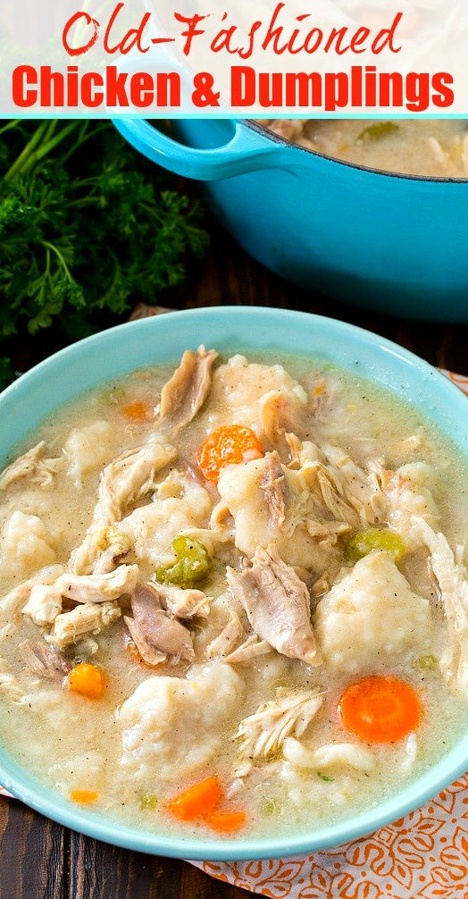 Bowl full of Chicken with Dumplings