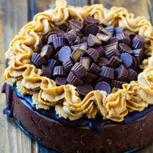 Whole Chocolate Peanut Butter Cup Cheesecake covered with mini peanut butter cups.