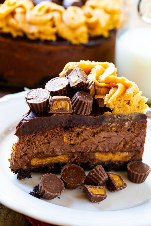Slice of Chocolate Peanut Butter Cheesecake.