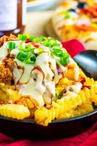 Southern Cheese Fries covered with pulled pork and pimento cheese sauce.