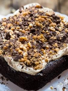 Chocolate Peanut Butter Fun Cake