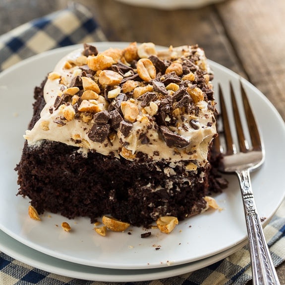 Chocolate Peanut Butter Fun Cake
