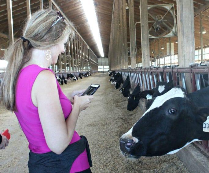 Ohio Dairy Farm- Clardale Farms