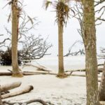 Hunting Island State Park South Carolina