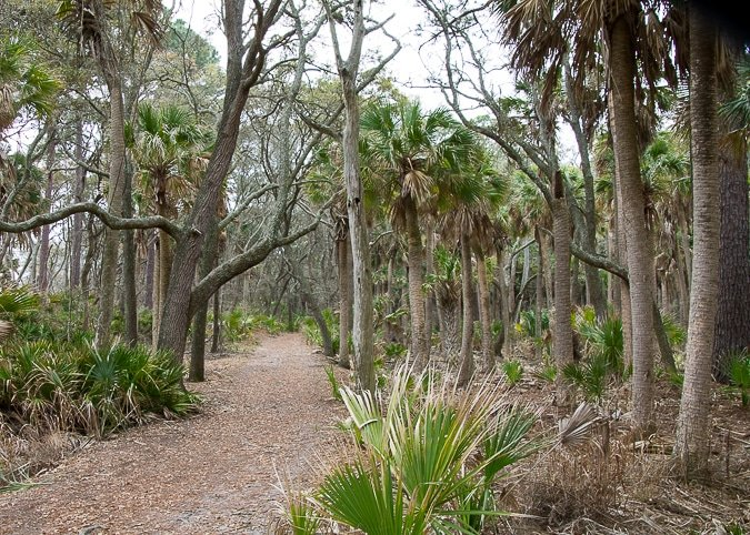 Hunting Island State Park in South Carolina