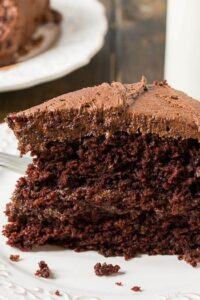 Duke's Chocolate Mayonnaise Cake - so moist and rich!