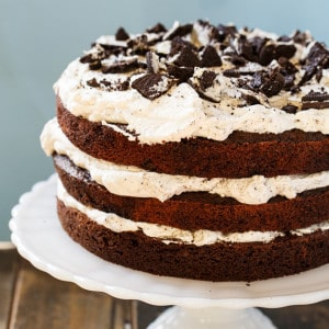 Mississippi Mudslide Cake from Grandbaby Cakes Cookbook
