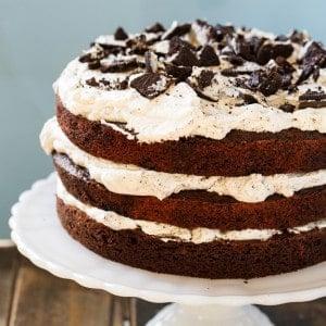 Mississippi Mudslide Cake from Grandbaby Cakes Cookbook