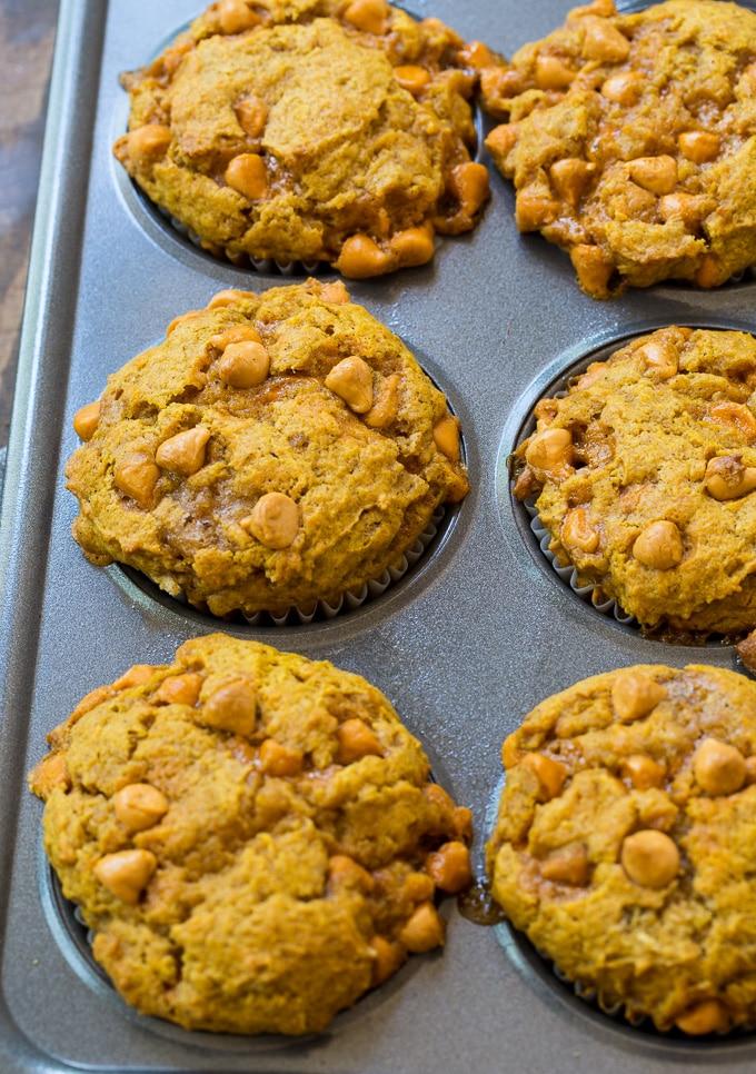 From scratch Pumpkin Butterscotch Muffins