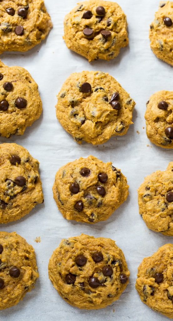 Soft Pumpkin Chocolate Chip Cookies